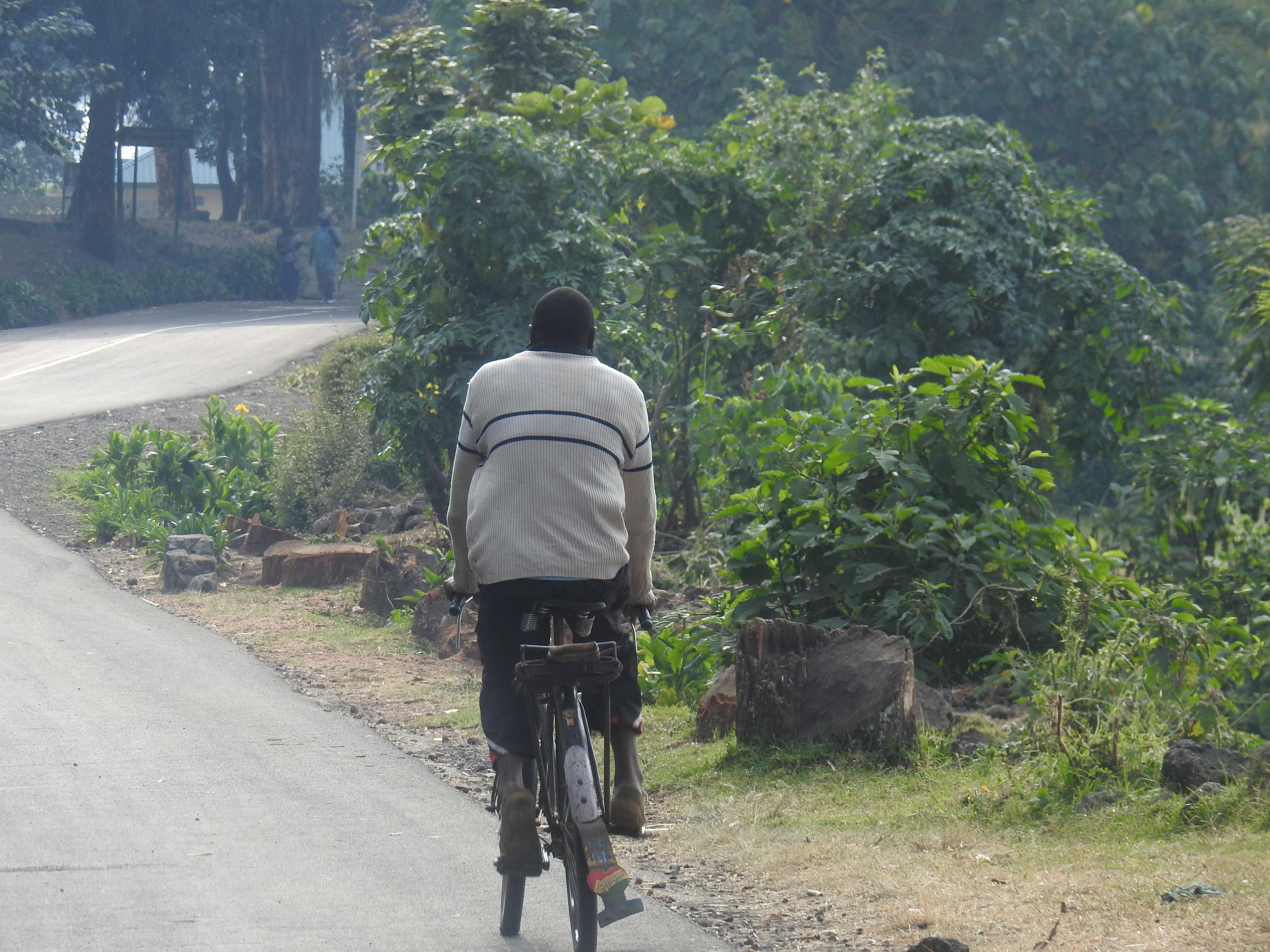 Bad_bike_.jpg