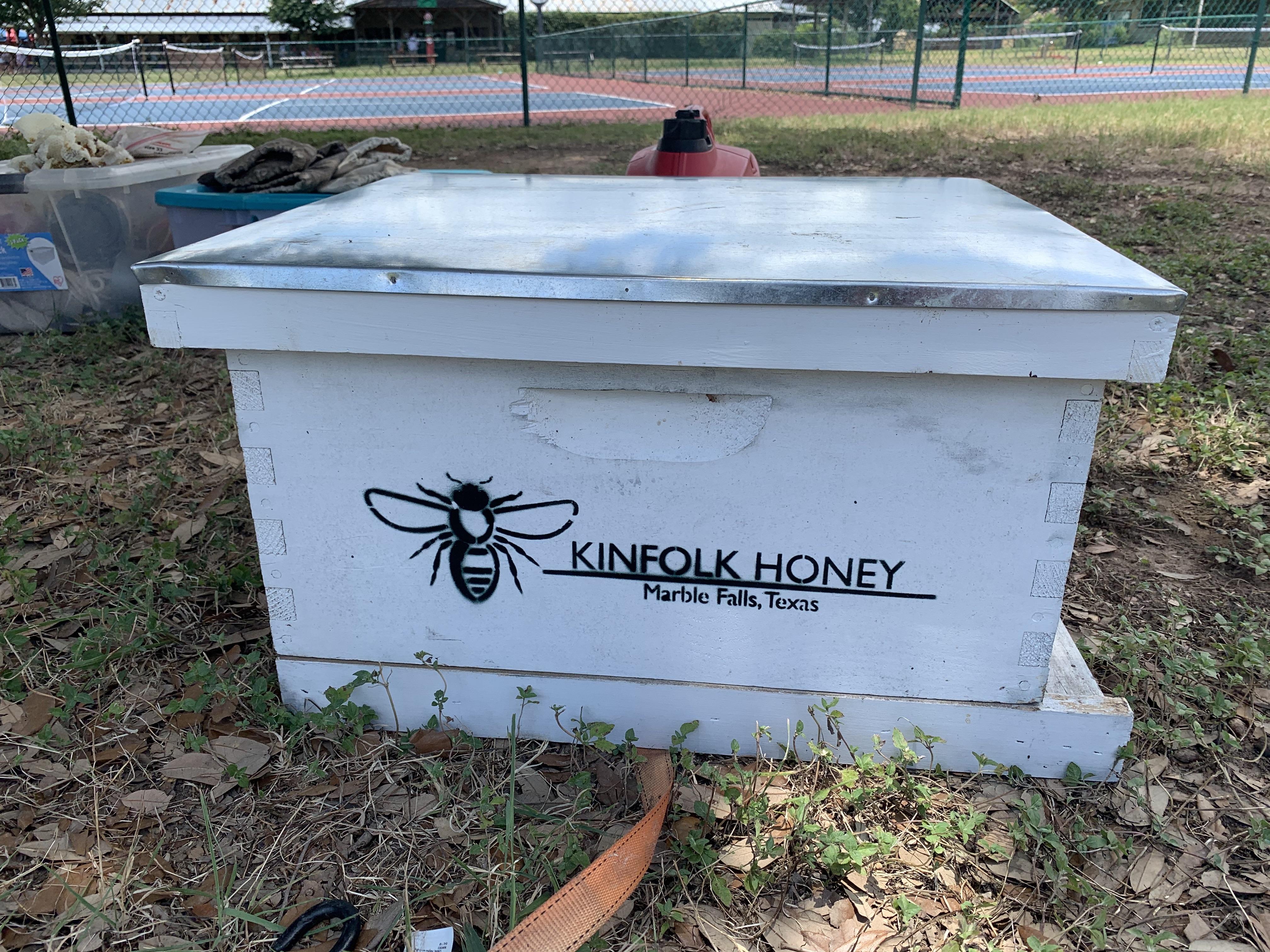 Bee Blog 2