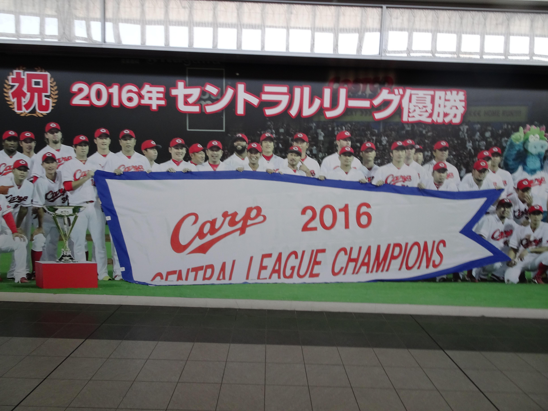 Carp banner.jpg