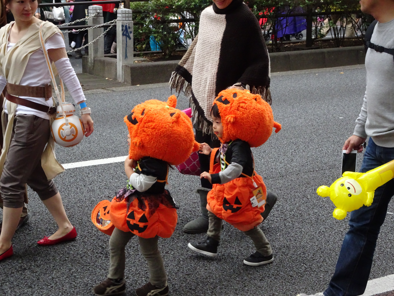 Cute little pumpkins.jpg