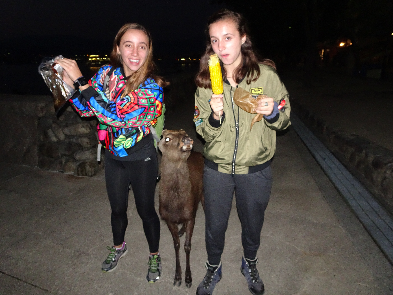 Deer and girls1.jpg
