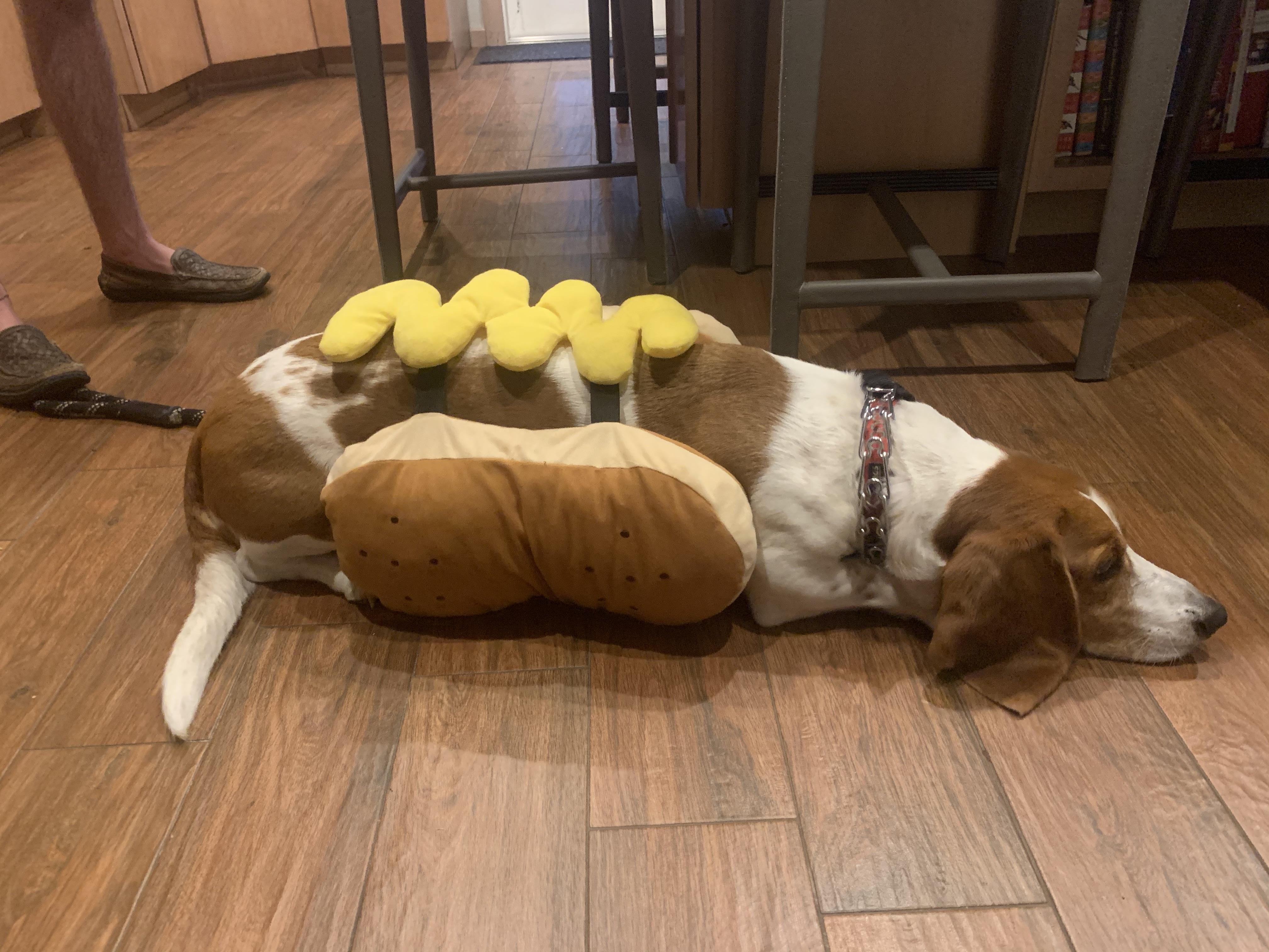 Dodger Hot Dog1
