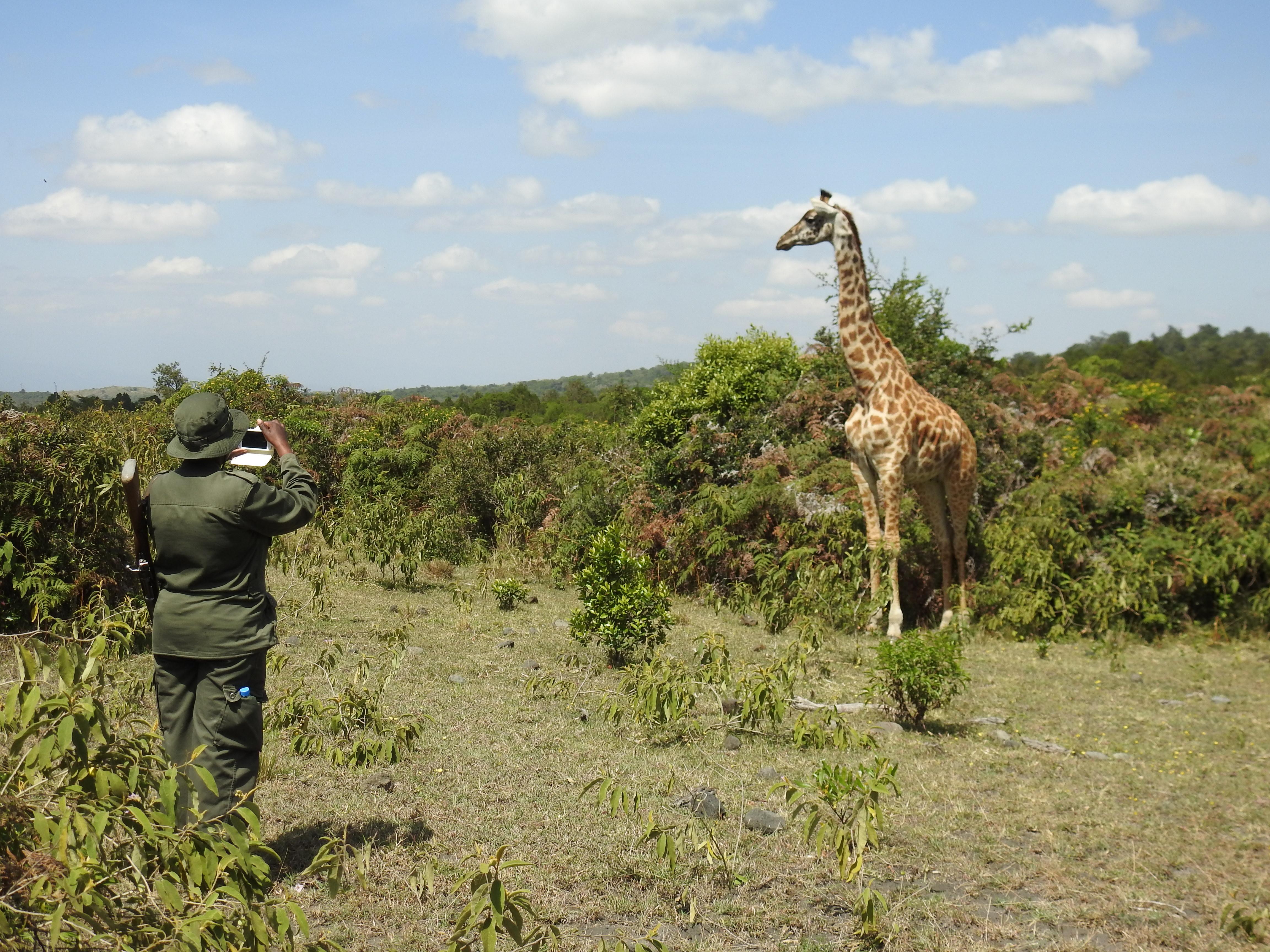 Giraffe_Guide_Selfie.jpg