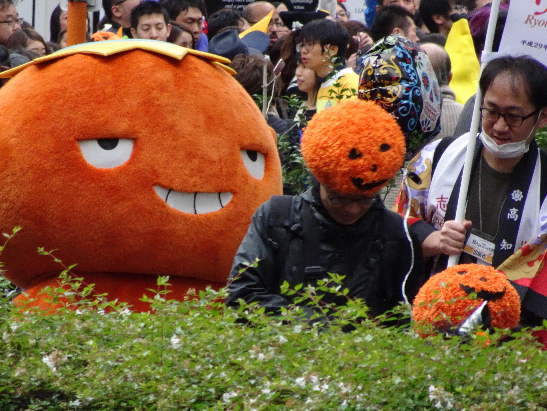Orange heads.jpg